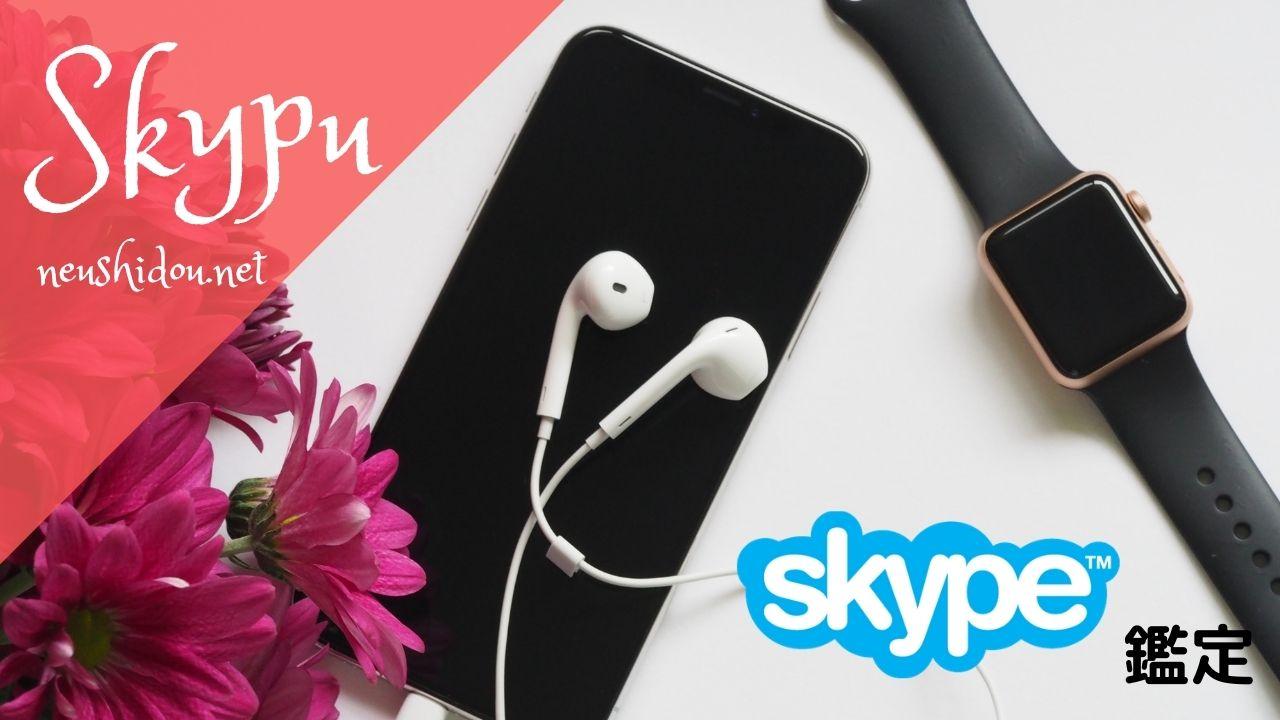 Skype鑑定